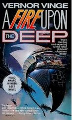 Upon The Deep Vernor Vinge sci fi books