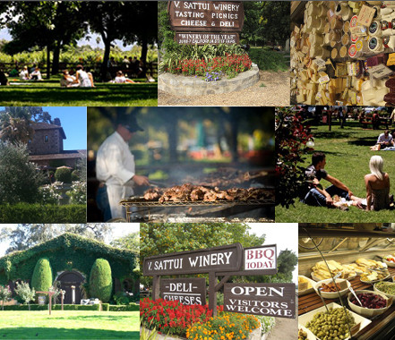 Napa Valley Kids Friendly Wineries Sattui